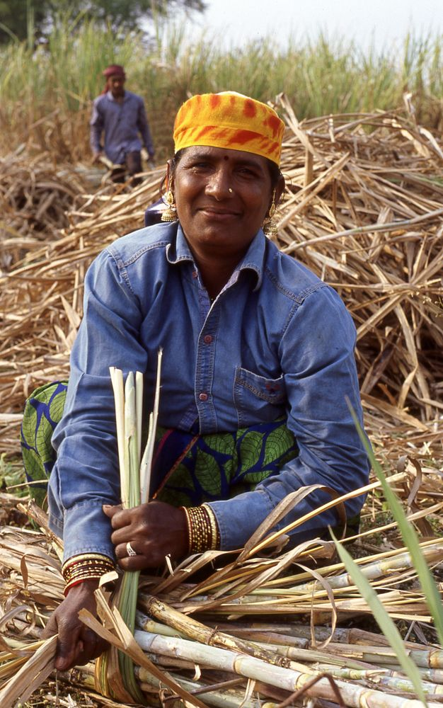 Sugarcane field worker, India,  - matthiasschlaipfer | ello