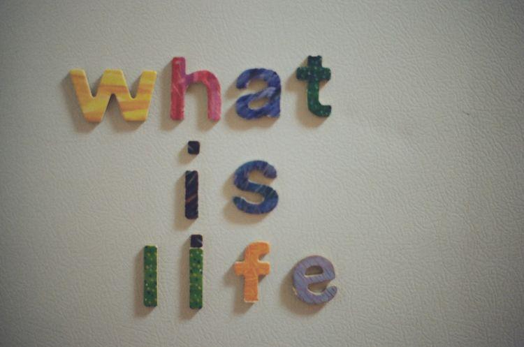 Life, refrigerator. George born - go-digital | ello