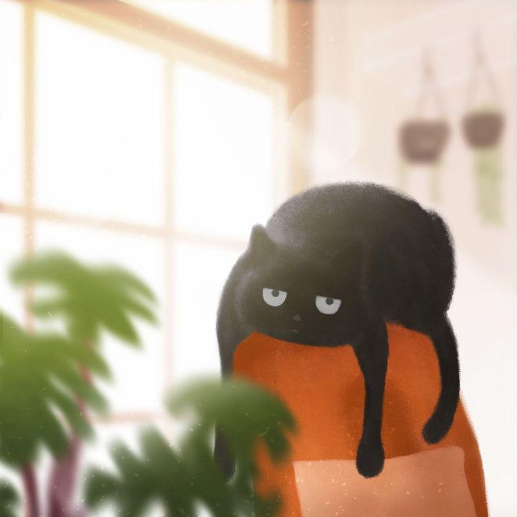 turn heat - cat, blackcat, indoor - nicartdaily | ello