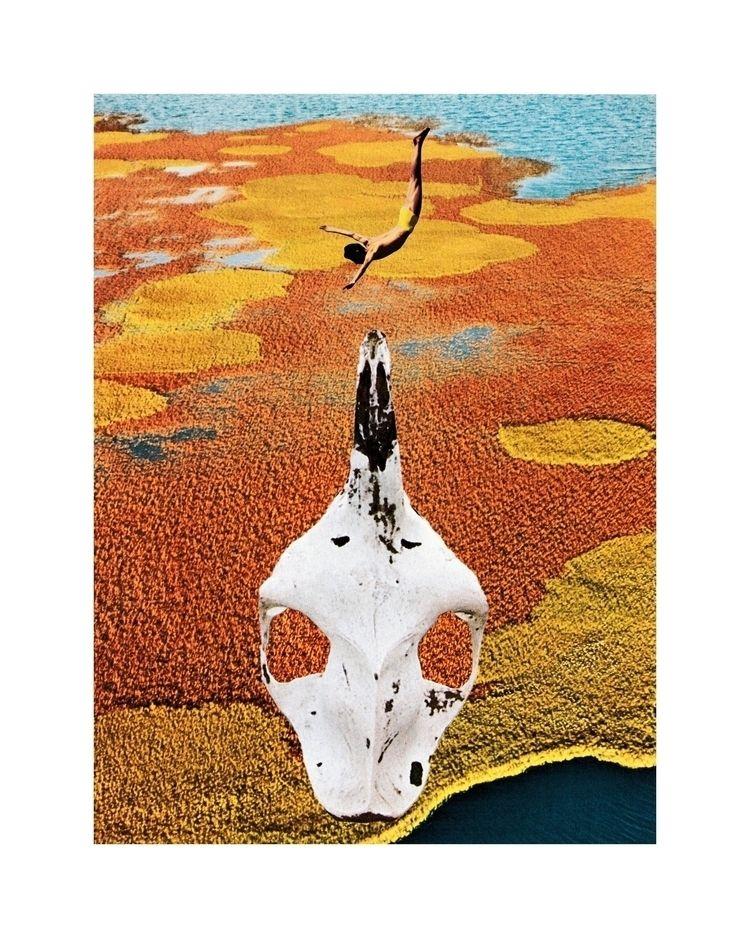 Skull Dive - collage, collageart - drimartz   ello