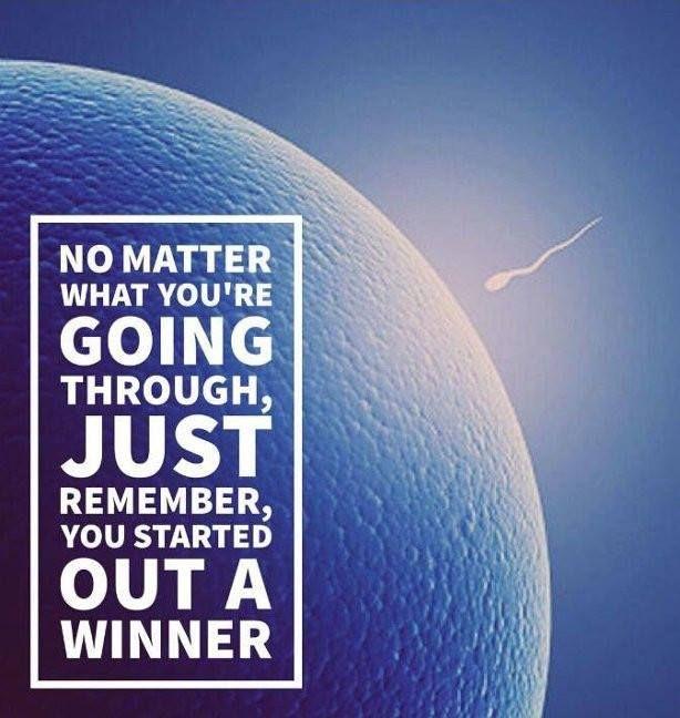 matter remember, started winner - purotom | ello