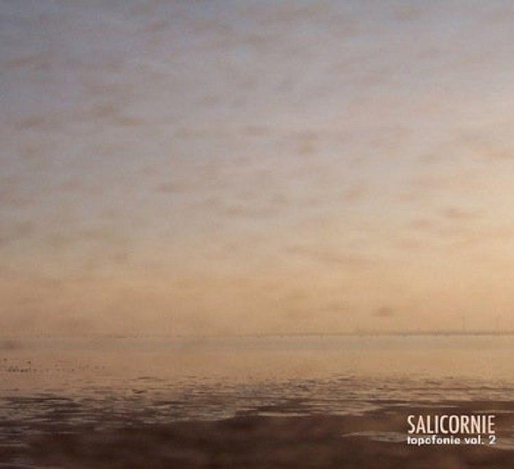 Journeying review Salicornie: T - richardgurtler | ello
