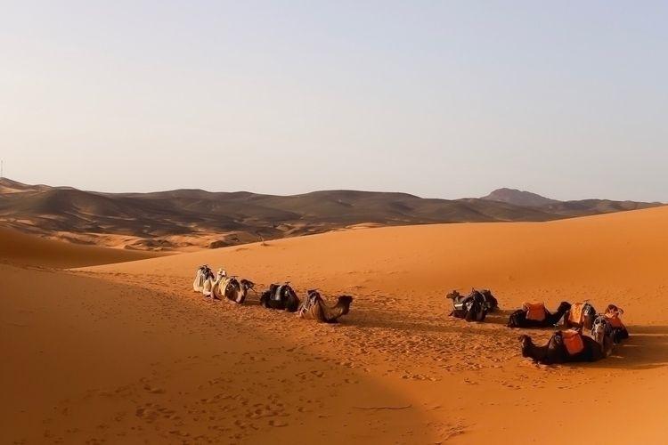 Merzouga desert - merzouga, morocco - geromp | ello