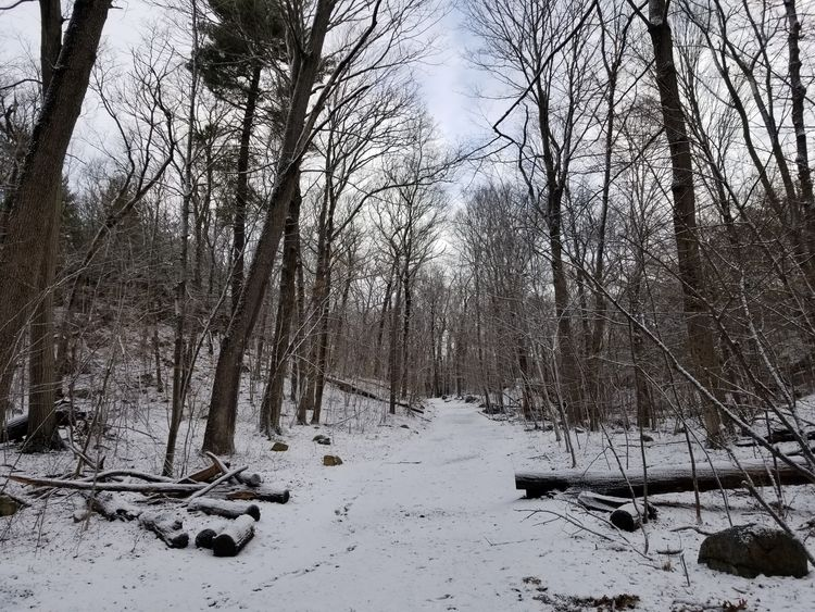 Middlesex Fells, showing late s - crowguided | ello