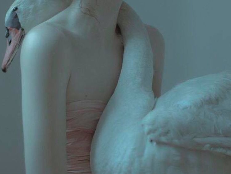 Loosened thighs feathered glory - roddiemac | ello