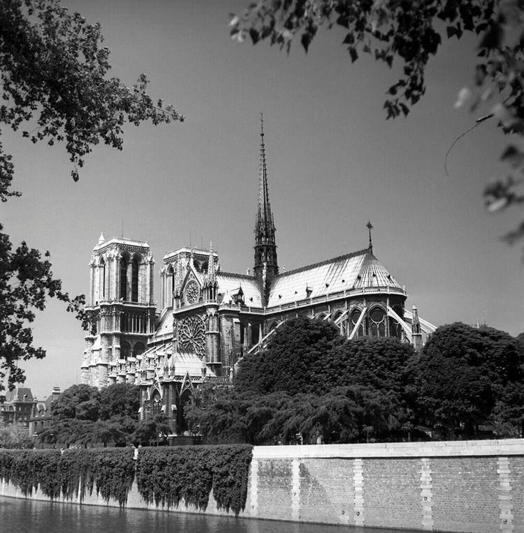 Paris, France 1959 Notre-Dame P - nickdewolfphotoarchive | ello