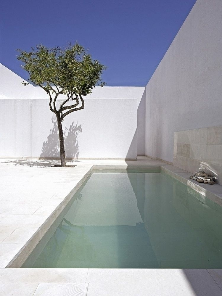 Walled patio pool. Gaspar House - upinteriors | ello