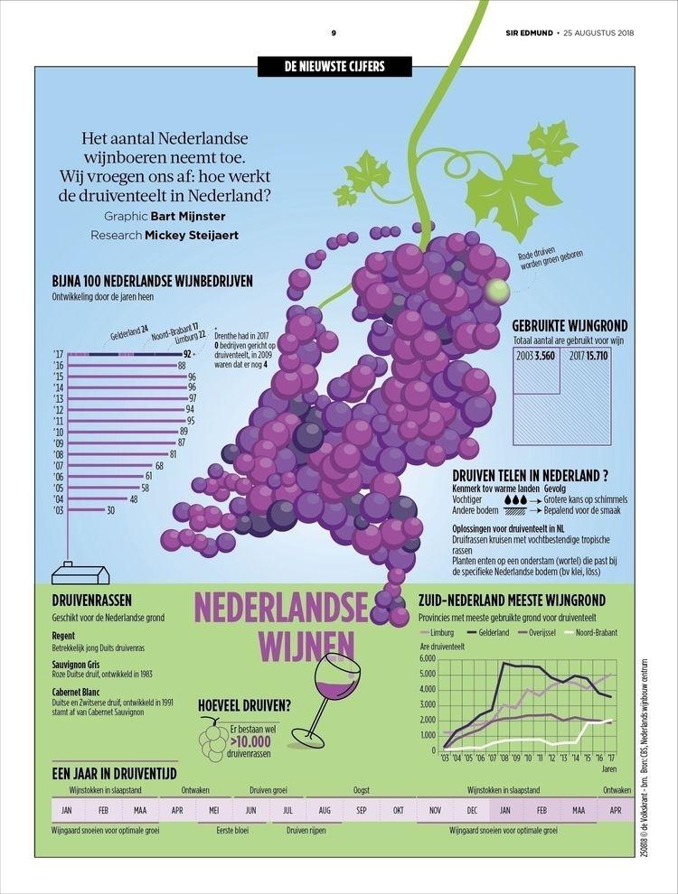 infographic, volkskrant, wijn - bartmijnster | ello