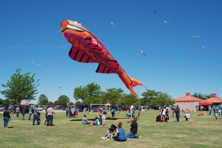 Giant fish kite flying Easter S - benraigoza   ello