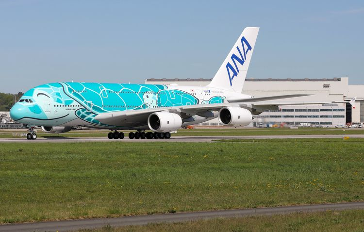 ana, allnipponairways, turtle - mathiasdueber | ello