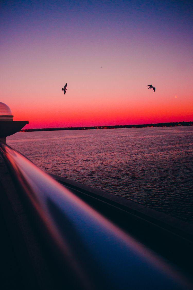 Birds flying - photography, fineart - ijyoyo   ello