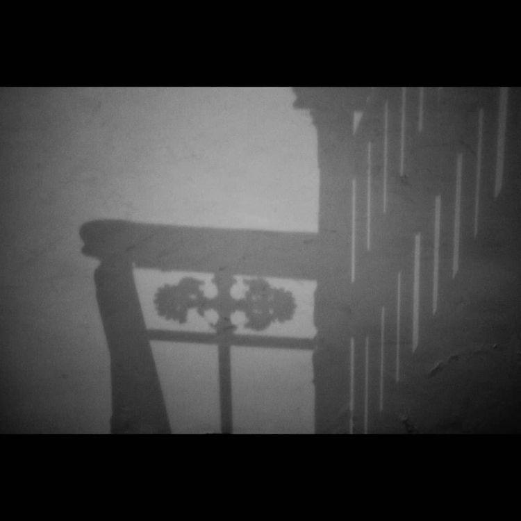 ombre lumiere - photography - cabra   ello