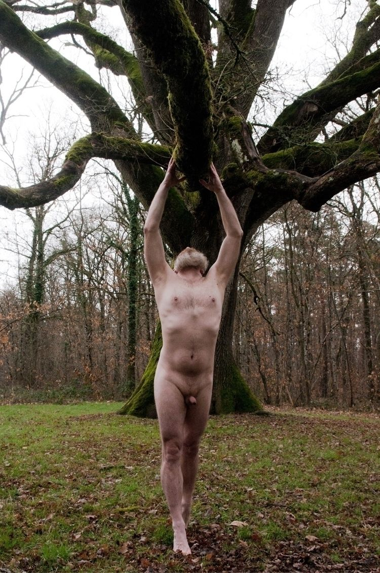 Grand Tree - crabar, nude, nature - crabar | ello