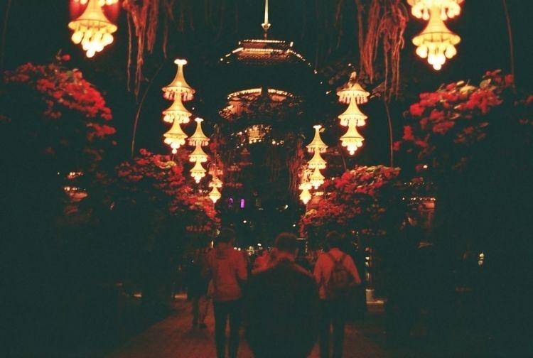 Tivoli Gardens. night - Copenhagen - andrew_murdoch | ello