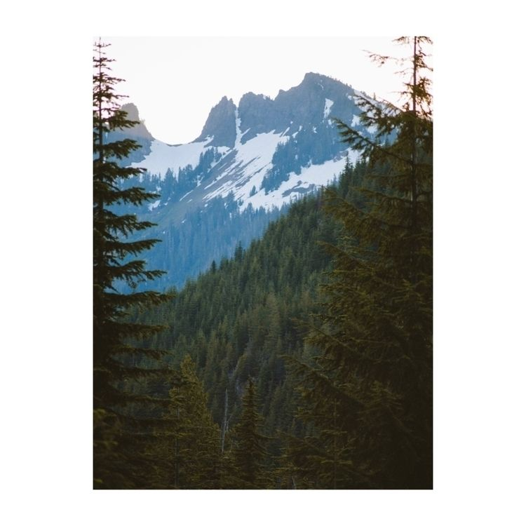Camping North Cascades - ivankosovan | ello