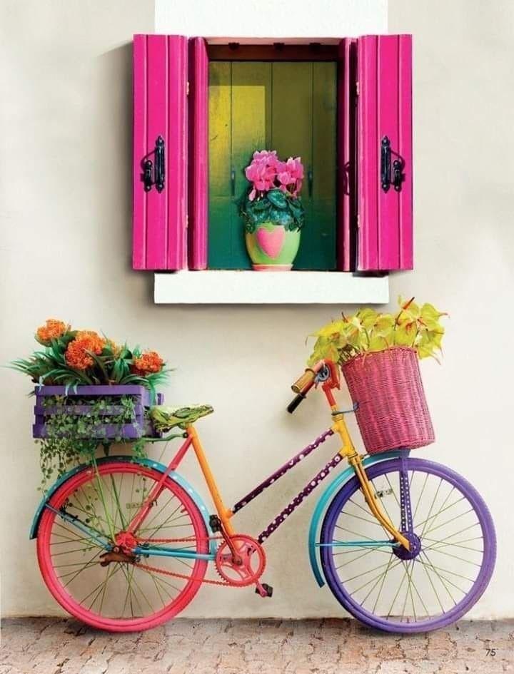 Today, open windows, curtains r - lolosbri | ello