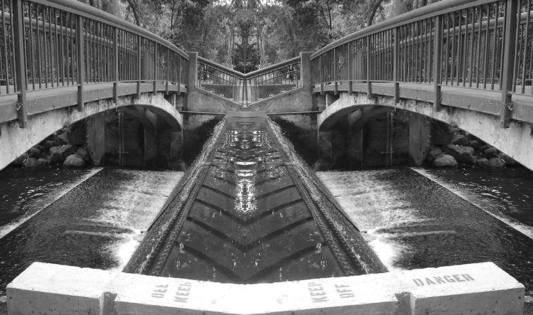 Sycamore Pool .#ello.. .#digita - zygzwurx | ello