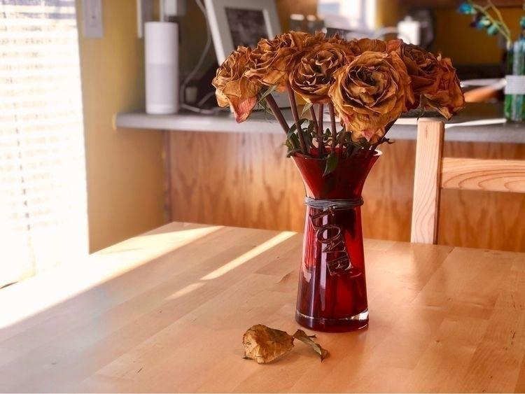 Love dead flowers - scarola | ello