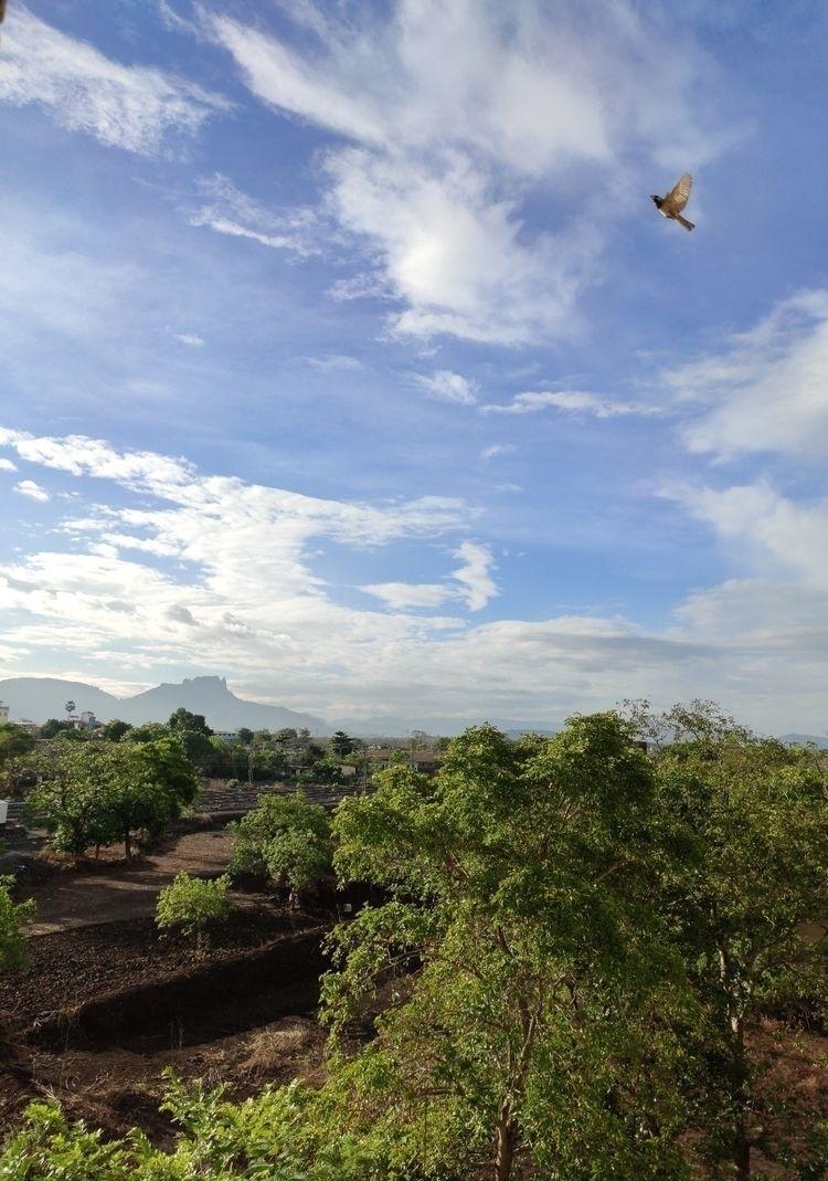 Beautiful Morning - morning, sunrise - akshaykarankale | ello