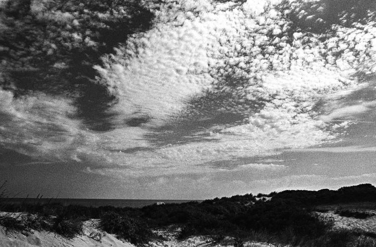 film, grain, blackwhite, monochrome - ol_sea | ello
