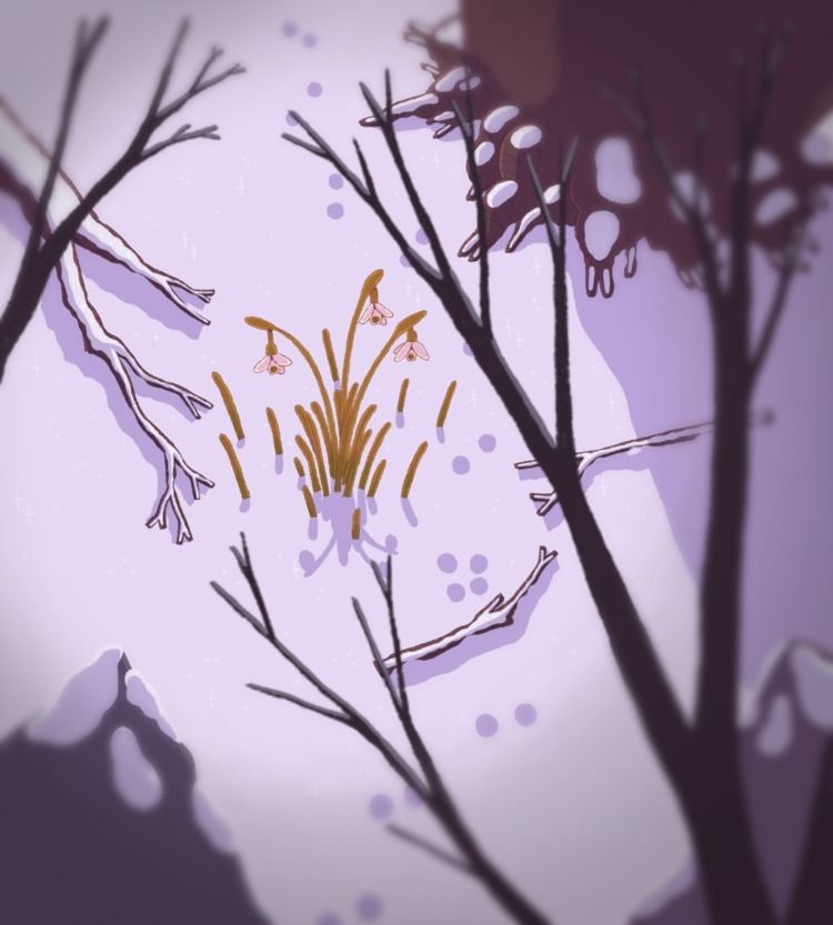 perce-neige, snowdrops, winter - katamaheen | ello