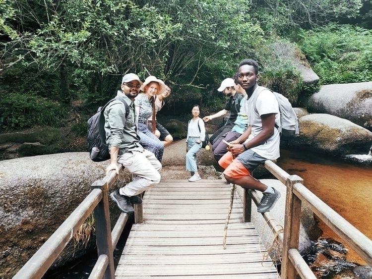 Small bridge large forest. Chec - imhassane   ello