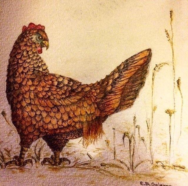 Spring Chicken - lizartseattle | ello