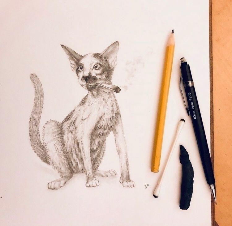 Stoner - cat, illustrate, sketching - mindsketchin | ello