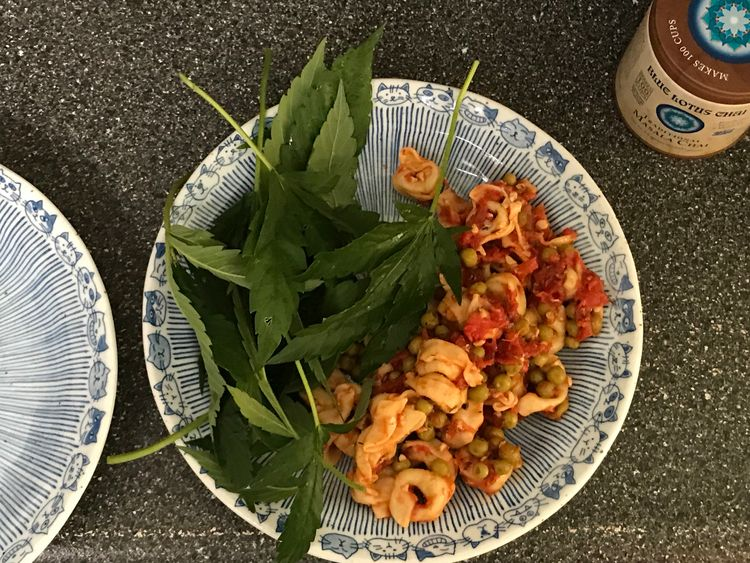 Tortellini tomatoes peas raw Ca - ellocannabis | ello