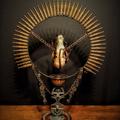 Gears on Acid (@gearsonacid) Avatar