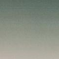 (@dreyfus) Avatar