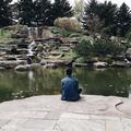 Seth (@zaddys) Avatar