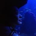 suuhi (@suuhi) Avatar