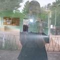 @jenny_nomad Avatar