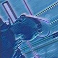 Rexa (@rex4) Avatar