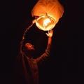 Thomas Shellberg (@tommyshellberg) Avatar