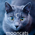 The Mooncats (@mooncats) Avatar