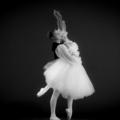 Ello Ballet (@elloballet) Avatar