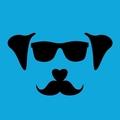Man Vs Dog (@manvsdog) Avatar
