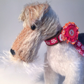 The Little Toy Dog Company (@littletoydogs) Avatar