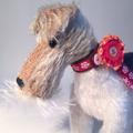 The Little Toy Dog Company (@littletoydogs) Avatar