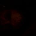 Darren (@d_a_r_r_e_n) Avatar