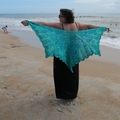 Lisa Santoni Cromar (@serenity-knits) Avatar