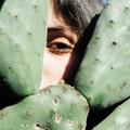 Sofia Motta (@sofiamottaa) Avatar