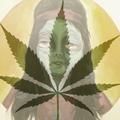 Bongsnake (@bongsnake) Avatar