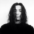 sr gallo (@veccogallo) Avatar