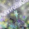 MILITZA (@militz) Avatar
