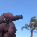 Cigars (@cigarsello) Avatar