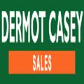 Dermot Casey (@dermotcasey) Avatar