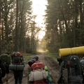 backpackers (@backpackers) Avatar